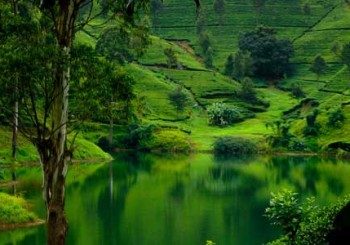 Sri-Lanka-adventure-holidays-travel-tours-vacation-packages-Nuwara-Eliya